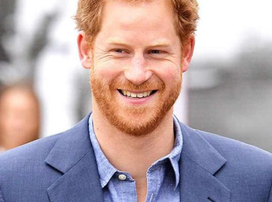 Royal Family To Pay For Harry's May 19 Wedding