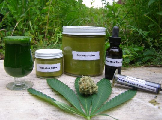 Home Office On Verge Of Announcing Flexible Laws On Cannabis Oil Prescription
