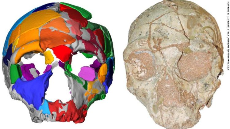 Scientist's Amazing  Discovery Of Oldest Human Skull In Greece