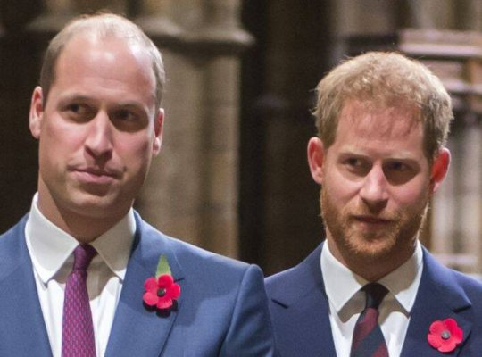 Prince William and Prince Harry Resolve  Their Differences