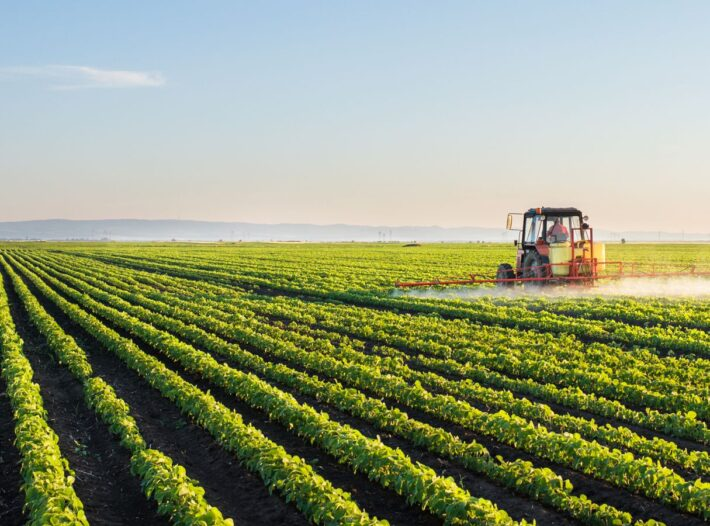 New Mentorship Programme To Help UK Farmers Boost Exports