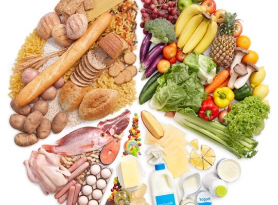Government Report Recommends Multi Million Scheme For New Measures To Improve Food Nutrition In Schools