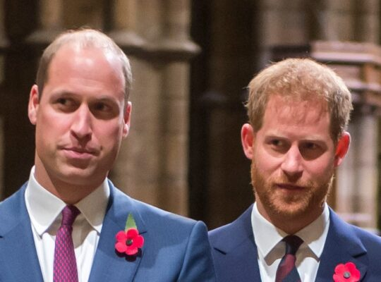 Defamatory Claim Against Prince William From Brothers At War Documentary Highlights  Potential Danger Of Media