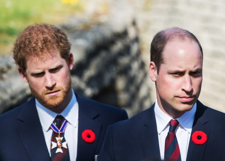 Prince Harry And Prince William Will Participate In BBC Documentary To Commemorate  Late Duke Of Edinburgh